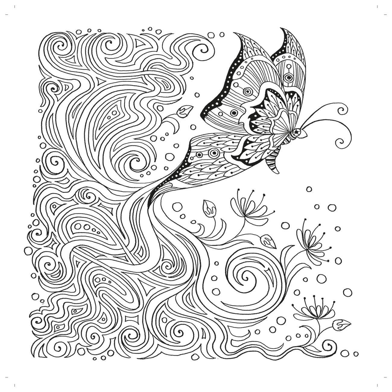 Zencolor Ausmalbuch mit wunderschönen Schmetterlingen und Vögeln