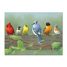 """Malen nach Zahlen """"Vögel"""", ohne Rahmen Malen nach Zahlen."""