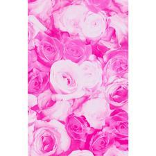 Rosen pink