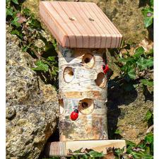 Minibugs - Marienkäferhaus Insektenhotels - gemütliches Heim für kleine, nützliche Gartenhelfer.