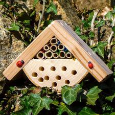 Minibugs - Käferhaus Insektenhotels - gemütliches Heim für kleine, nützliche Gartenhelfer.