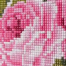 Detailansicht Rosen