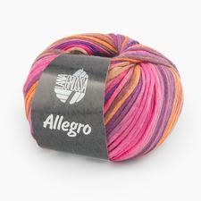 31 Pink/Orange/Violett/Zimt