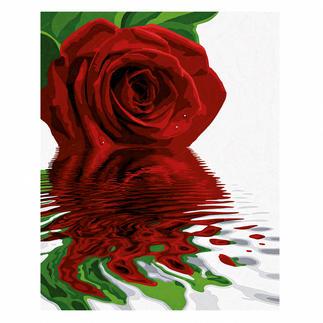 Malen nach Zahlen - Rose Malen nach Zahlen.