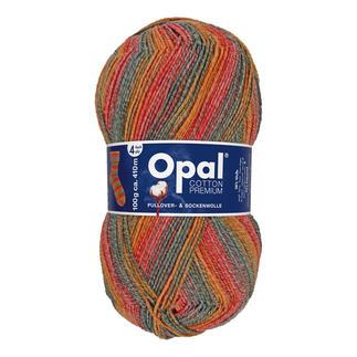 Cotton Premium 2020 von Opal