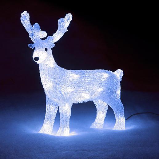 Deko LED-Rentier