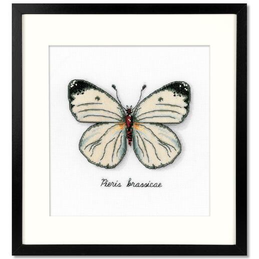 Weißer Schmetterling